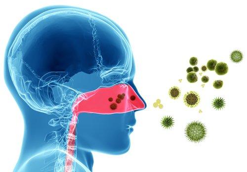 Las alergias primaverales también afectan a tus dientes